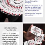cardistry-fanning-playing-card (2)
