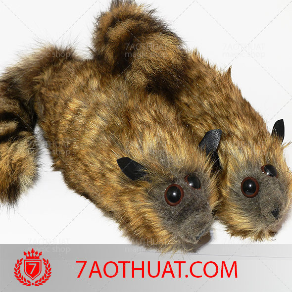 chon-gia-ao-thuat-7