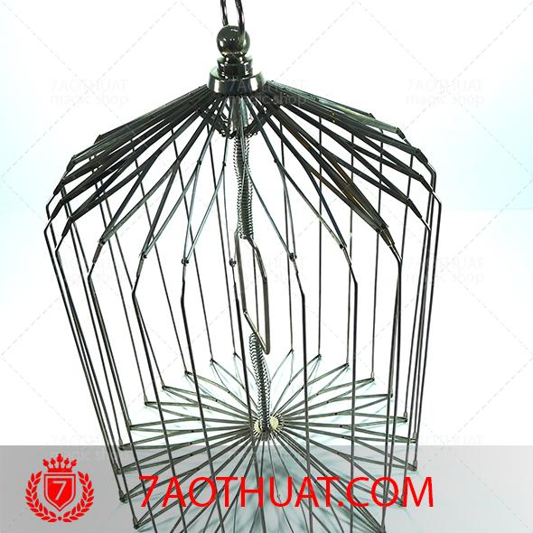 khan-ra-long-chim-trung- (9)