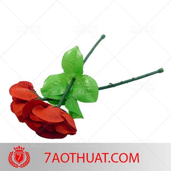 tay-khong-ra-hoa-hong- (4)