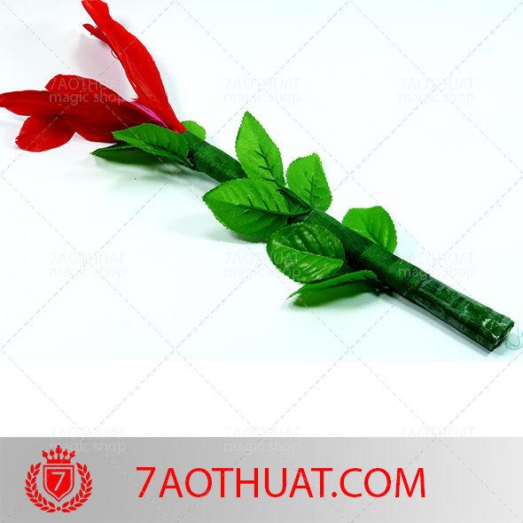 hoa-doi-mau-2