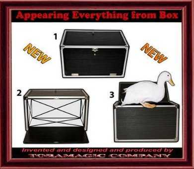Appearing-Everything-from-Box-1