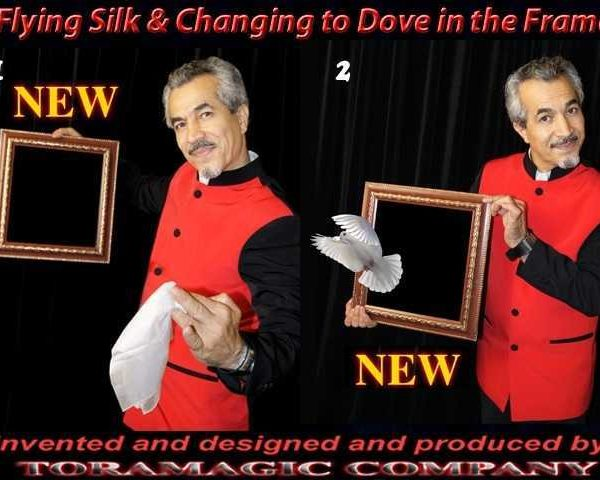 Flying-Silk-and-Changing-to-Dove-in-the-Frame