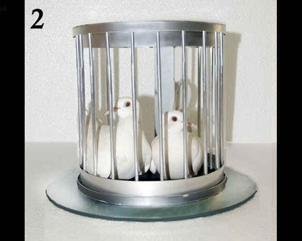 Tora-Automatic-Hat-to-Bird-Cage-2