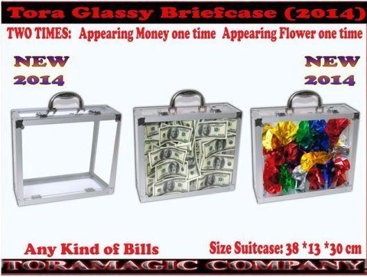 Tora-Glassy-Briefcase