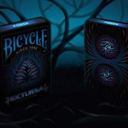 Bicycle-Nocturnal (1)