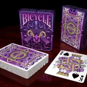 Bicycle-Viola-card (11)