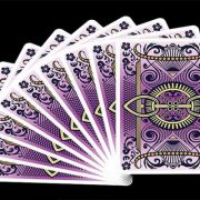 Bicycle-Viola-card (13)