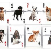 Companion-Dog-Playing-Card (4)