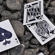 Totem-Deck-Limited-Edition-out-of-print(Blue) (2)