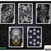 Bicycle-Strigiformes-Owl-Playing-Cards (4)