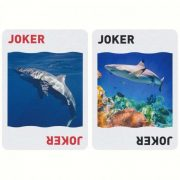 Shark-playing-cards (6)