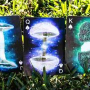 Limited-Edition-Fungi-Mystic-Mushrooms-Mycological-Playing-Cards (3)