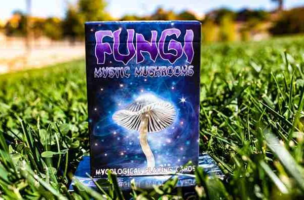 Limited-Edition-Fungi-Mystic-Mushrooms-Mycological-Playing-Cards (5)