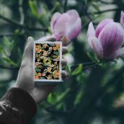 Limited-Edition-Black Flora-Playing-Cards (4)