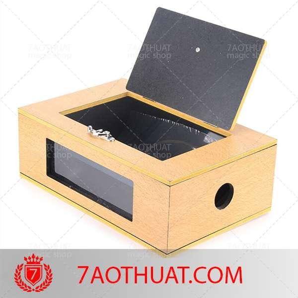 See-Thru-Tip-Over-Box-(Wooden) (2)