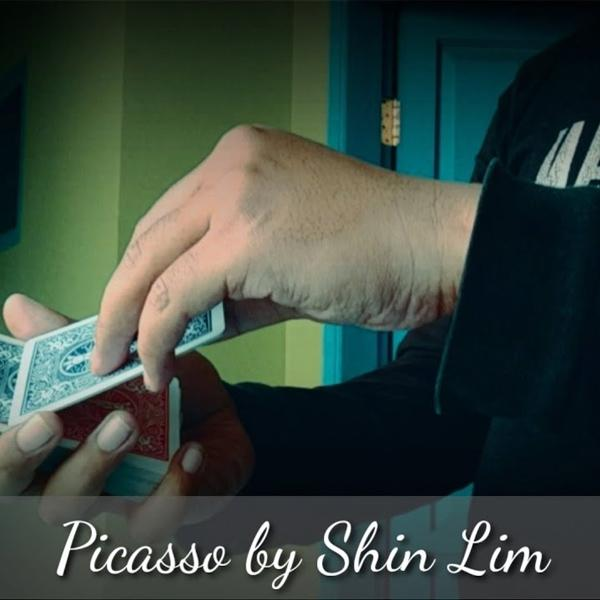 Picasso by Shin Lim Handcrafted (1)