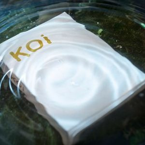 Koi V2 Playing Cards by Byron Leung (1)