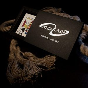 WHIPLASH- by- Josh- Janousky- Handcrafted (1)