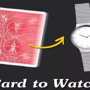 card - to -watch
