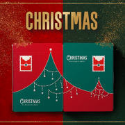 Christmas Playing Cards (Green) by TCC (2)