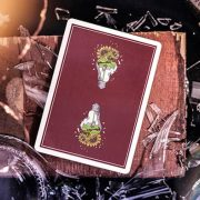 Breakthrough-Signature-Edition-Playing-Cards-by-Emily-Sleights (2)