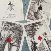 Cotta's-Almanac-#1-Transformation-Playing-Cards (4)