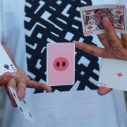 Oink-Oink-Playing-Cards (4)